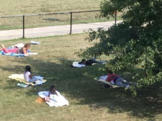 students reading outside on beachtowels