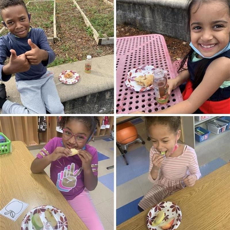 photos of students tasting apples