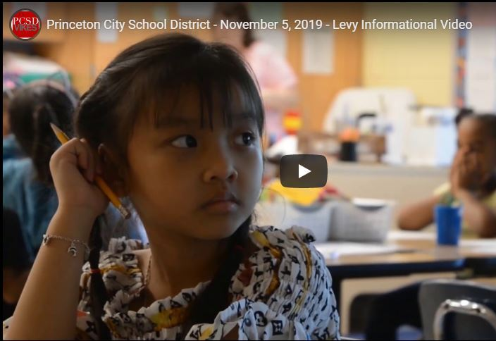 screen shot of the levy video