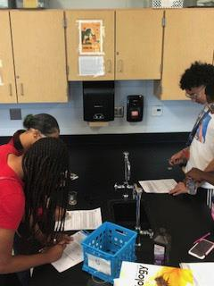 Biology studies enzymes in the lab